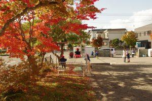 園庭の紅葉もすっかり紅葉しました。
